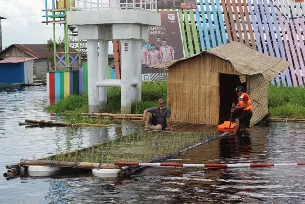 Kabid PKP Apresiasi Sikap Warga Desa Muara Enggelam Tanam Padi Apung